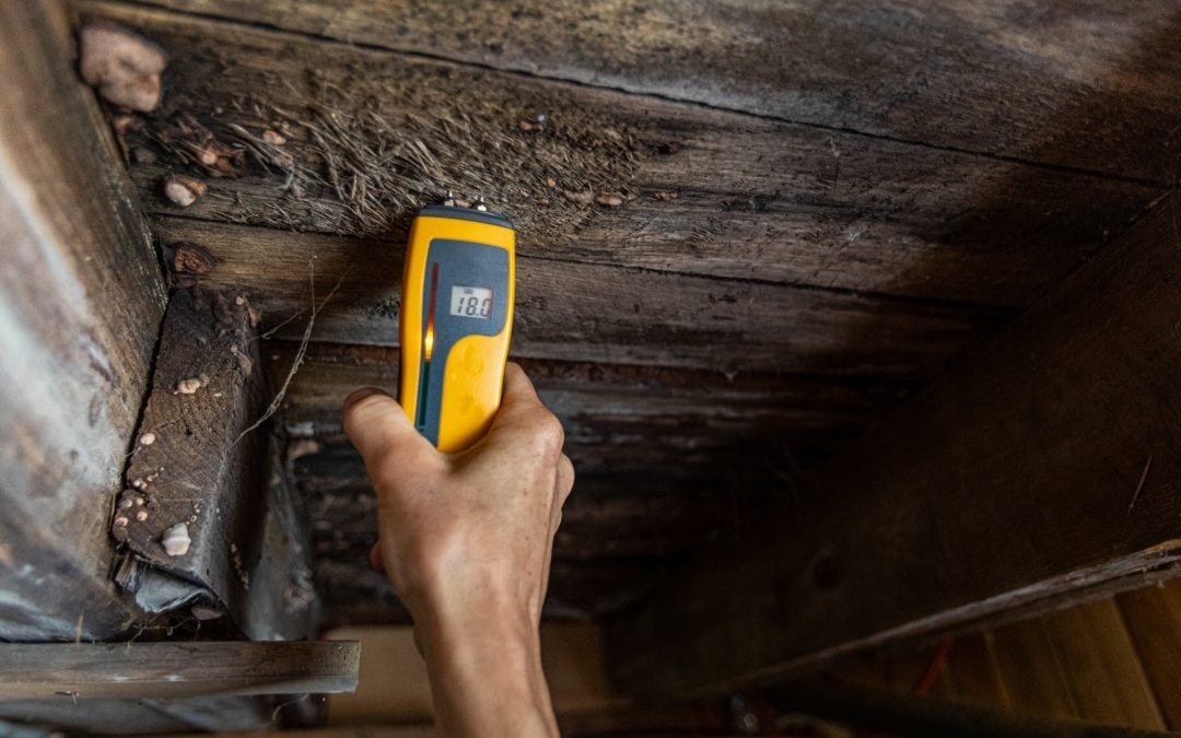 What causes damp?